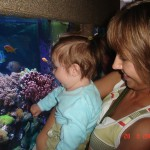 14. Rodzice zabrali mnie do oceanarium. Tylu kolorowych ryb to chyba nawet tata na własne oczy wcześniej nie widział.