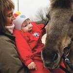 25. Konie są super. Bardzo lubię zajęcia z nimi.